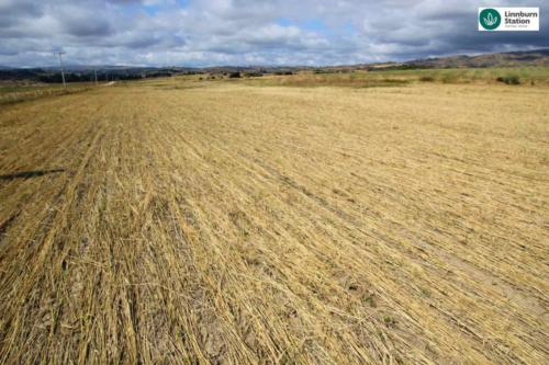 Crimping roller cycling nutrients to improve soil health